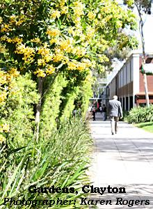 gardens at Clayton campus